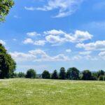晴れた日の公園でブログを書こう